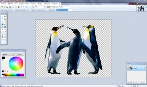 Quitar fondo con Paint.net
