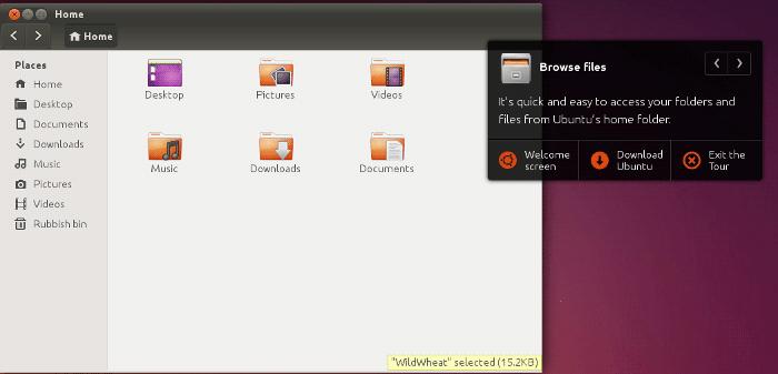 Ubuntu Online Browse Files